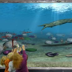 INTERACTIVE AQUARIUMS